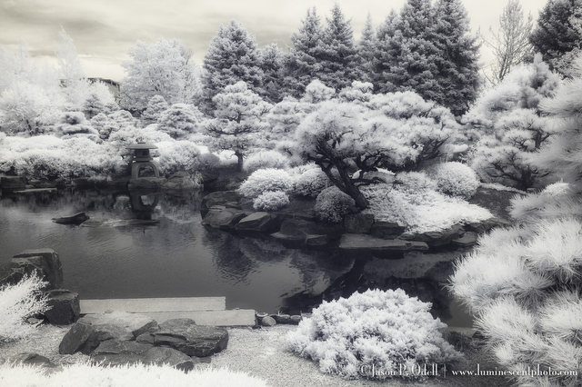 Japanese Gardents